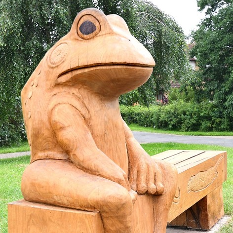 Frog bench