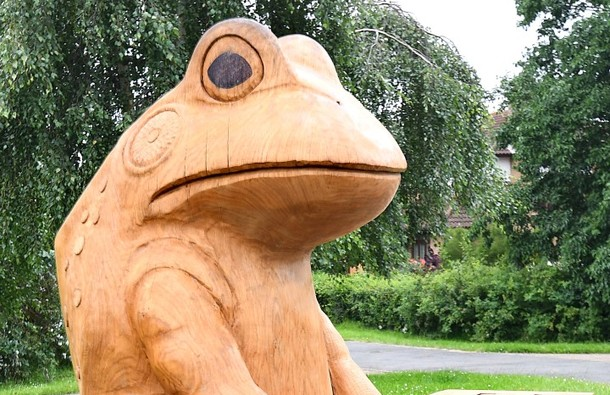 Gyosei Art Trail Frog Sculpture